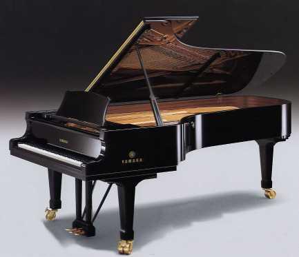 http://www.lepianodeconcert.com/piano.jpg